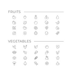 set icons fruits and vegetables vector image