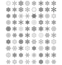 set of different gray snowflakes vector image