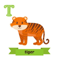 Tiger T letter Cute children animal alphabet in vector image