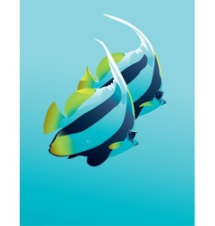 Banner fish vector image vector image