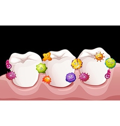Bacteria in human teeth vector