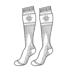 black engraved warm socks hand drawn ink drawing vector image