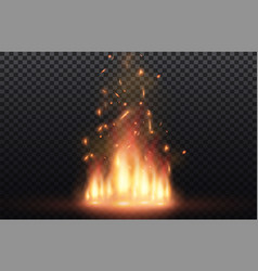 flame of fire with sparks on a black background vector image