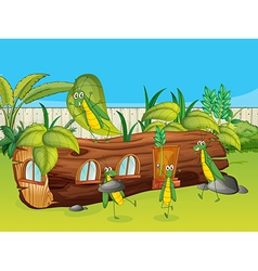 Grasshoppers and a wooden house vector image