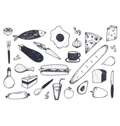 set hand drawn food isolated vector image