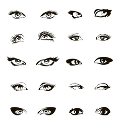 Woman eyes Beautiful female eye set or ink vector image