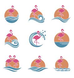 flamingo emblems set vector image vector image