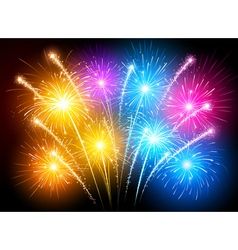 Colorful fireworks vector image vector image
