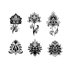 Decorative indian or persian paisley flowers vector image