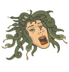 Head of medusa vector