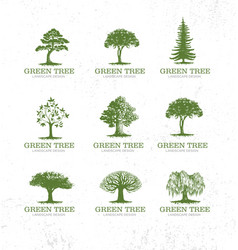 Landscape design workshop identity tree collection vector