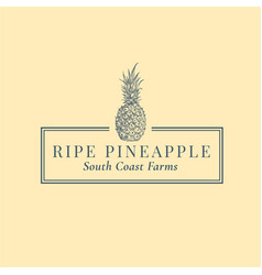 pineapple abstract sign symbol or logo vector image