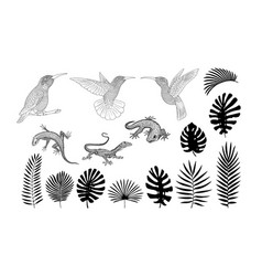 Silhouettes of lizards gecko and tropical banana vector