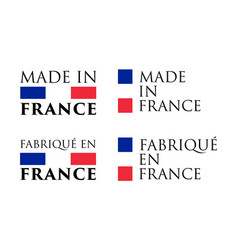 simple made in france and french translation vector image
