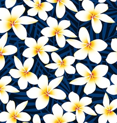 Tropical white frangipani plumeria flower seamless vector image