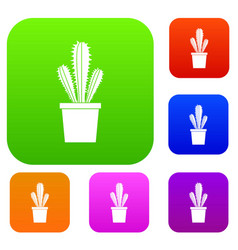 cactus in flower pot set color collection vector image