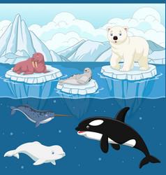 Cartoon wild arctic animal on north pole vector