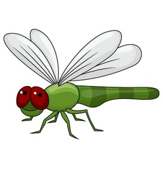 Dragonfly cartoon vector