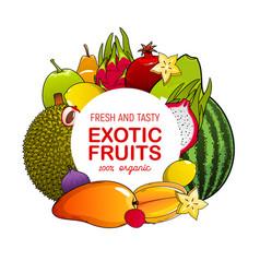 mango fig lychee watermelon fruit food icon vector image