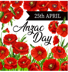 Red poppy flowers anzac day vector