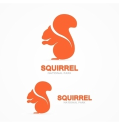 Set of squirrel logo vector