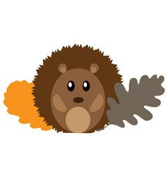 woodland animal vector image