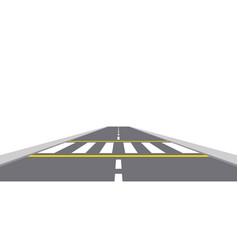zebra cross vector image