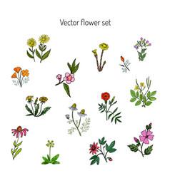 flower set hand drawn botanical vector image vector image