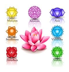 lotus and Seven chakras vector image