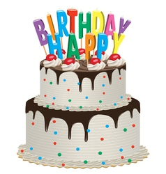 birthday chocolate cake vector image