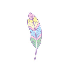 Beauty feather style with decoration design vector