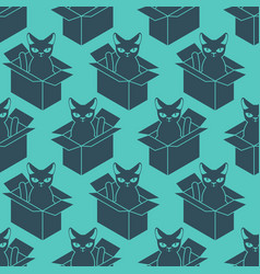 cat in box pattern pet in cardboard box vector image