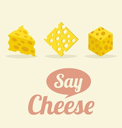Different Shape of Cheeses vector
