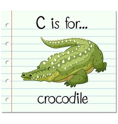 Flashcard letter C is for crocodile vector