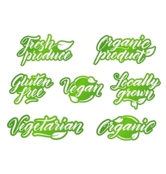 Hand drawn healthy food letterings Retro styled vector image