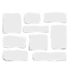 Set of paper different fragments scraps isolated vector