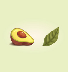 Set realistic fresh avocado fruit slice and whole vector