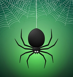 Spider and Cobwebs vector
