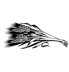 a sheaf of cones of wheat vector image vector image
