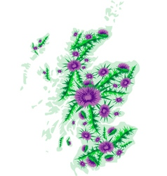 image map of Scotland with thistle flowers vector image vector image