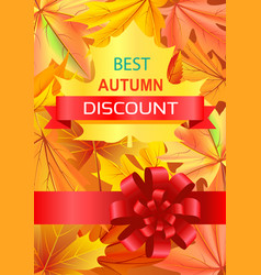 Best autumn discount promo poster with luxury bow vector