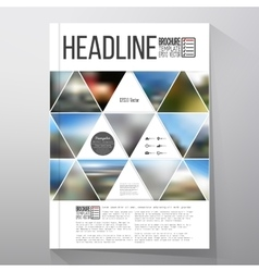 Business template for brochure flyer or booklet vector image