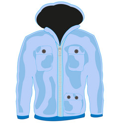 cloth hooded jacket vector image