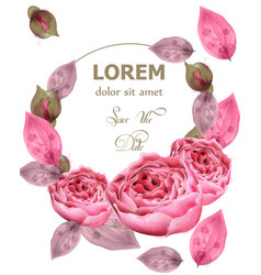 delicate pink roses wreath watercolor vector image