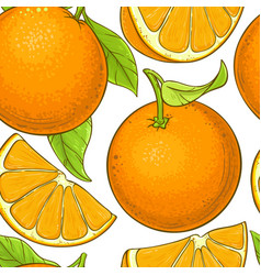 orange fruit pattern on white background vector image