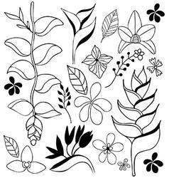 tropical flower doodle sketch vector image vector image