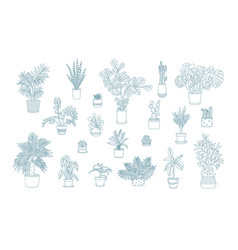 Different monochrome houseplants icons in line art vector