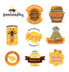 Honey natural food icon of beekeeping farm product vector