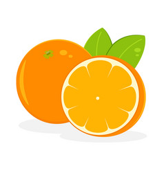 orange fruit icon isolated fruits and vegetables vector image