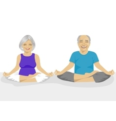 Senior couple doing yoga vector